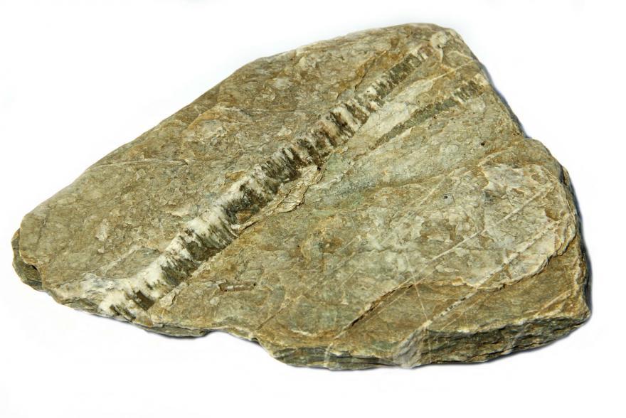 Ландшафтный камень - Филлит - 2