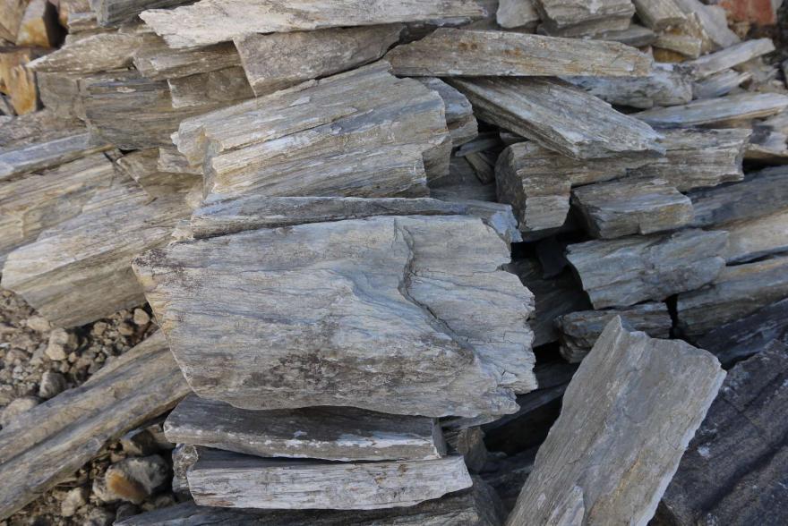 Ландшафтный камень - Окаменелое дерево - 3