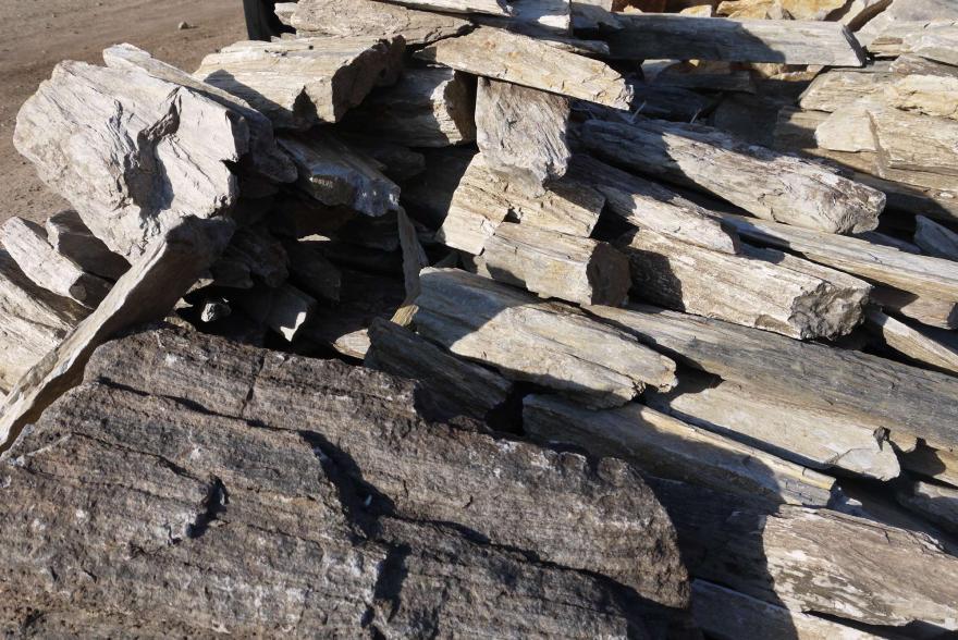 Ландшафтный камень - Окаменелое дерево - 4