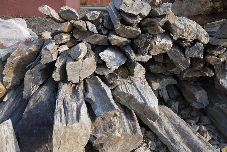 Ландшафтный камень - Окаменелое дерево - 5
